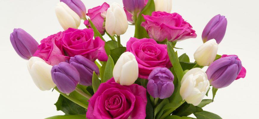 משלוחי פרחים באזור חיפה