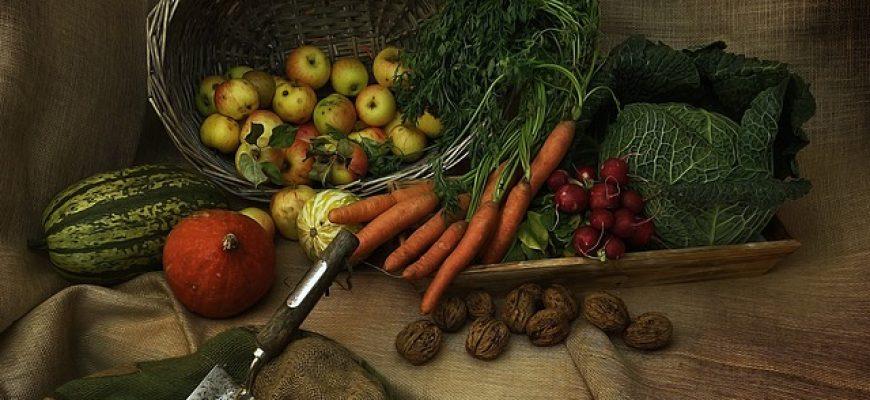 רגישות למזון לעת זקנה