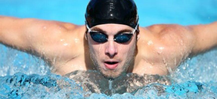 למה שחיה היא כל כך חשובה לגוף שלנו