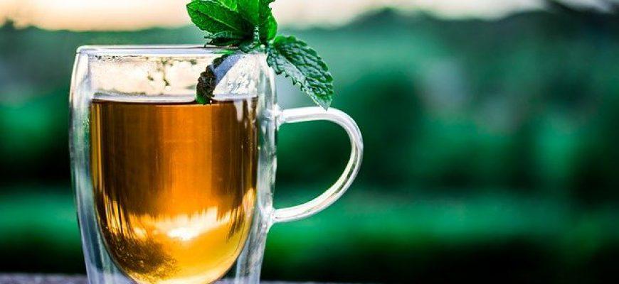 מה הן סגולותיו של התה הירוק ולמי הוא מתאים